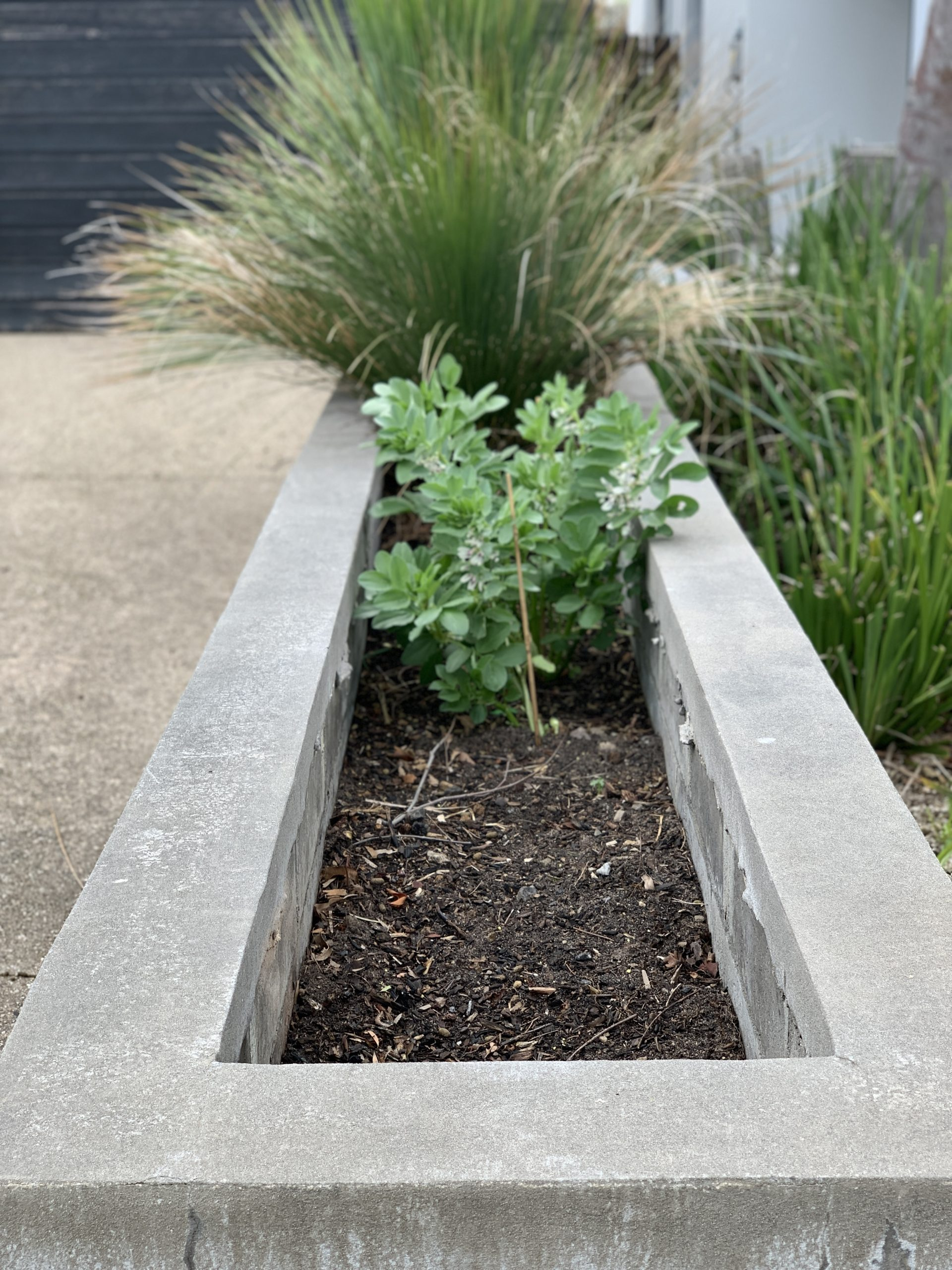 A Brick planter box rendered in Cairns with plants planted inside