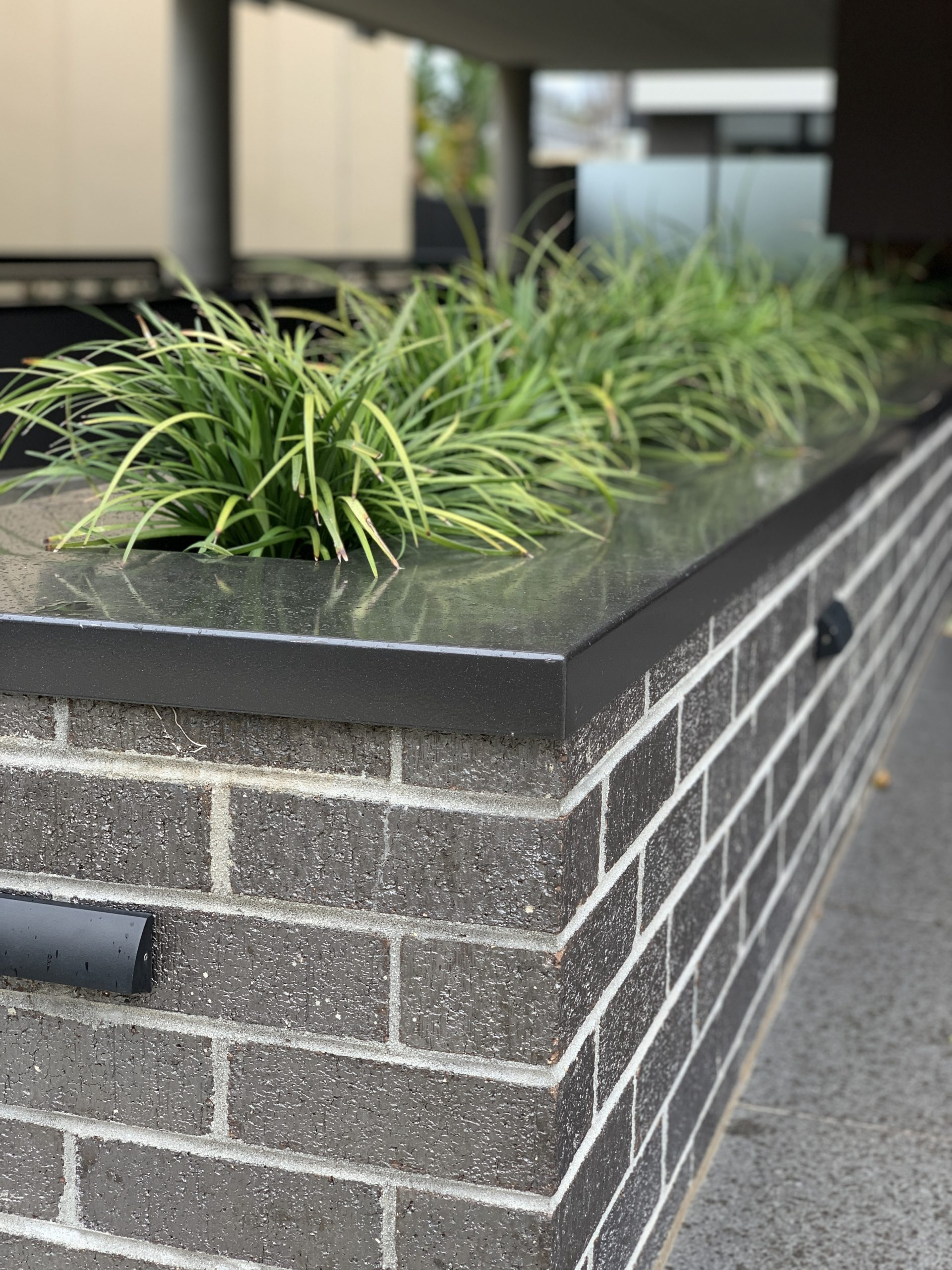 Feature brickwork used to build a planter box in Cairns with dark bricks and grey mortar and plants in the planter box